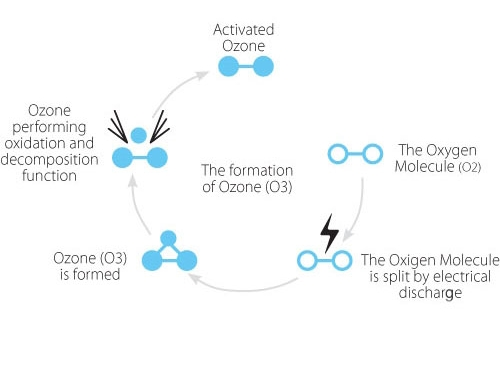 Principles of ozone sterilization